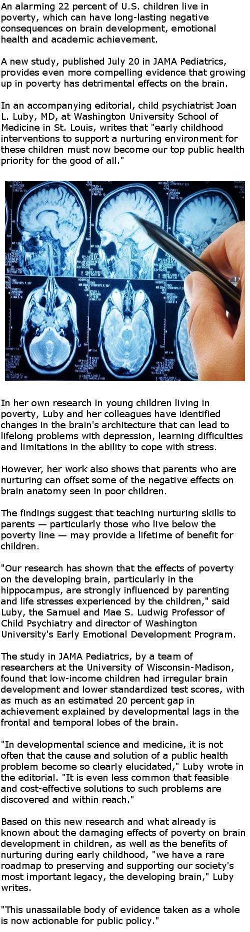Poverty has detrimental effects on child's brain development